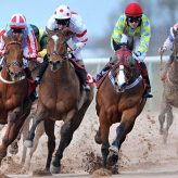 Most straightforward and Efficient Tricks to Bet over the Horse Racing for Beginners